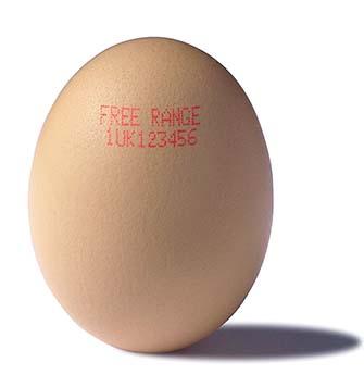 Eiercode generiert durch Linx Drucker