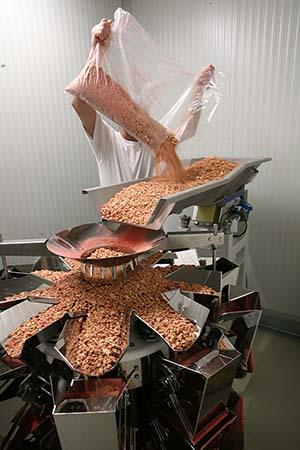 Die Mehrkopfwaage Ishida CCW-SE wird mit Cerealien bestückt