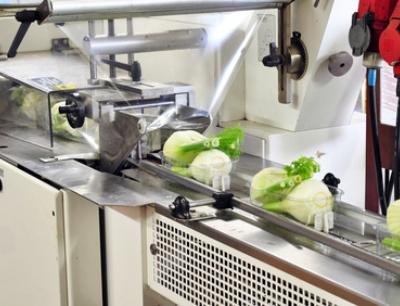 Hygienic Design in der Lebensmittelproduktion