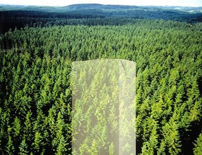 Studie zur Nachhaltigkeit