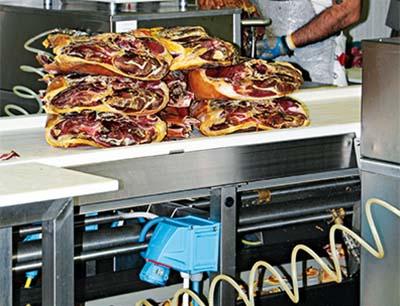 Steckvorrichtigungen in der Nahrungsmittelindustrie