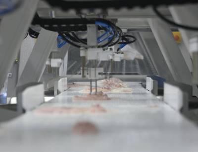Schneidemaschine Valka Cutter im Einsatz