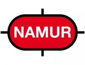 Die nächste Namur-Hauptsitzung findet am 09. und 10. November 2017 im Dorint-Hotel Bad Neuenahr statt