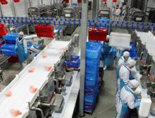 Verpackungsanlage Geflügel Ishida