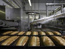 Großbäcker bieten umfassendes Ölsaaten-Monitoring an