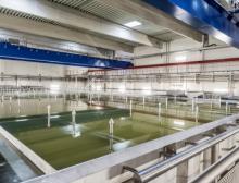 Salzbadanlage installiert in der Molkerei Ammerland