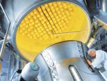 Mikroskopisch kleine Kapseln helfen dabei, sensible Inhaltsstoffe in Lebensmittel, Nahrungsergänzungen oder Pharmazeutika einzuarbeiten